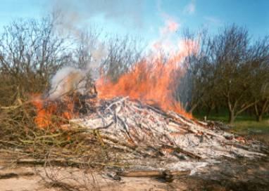 Agricultural Burning