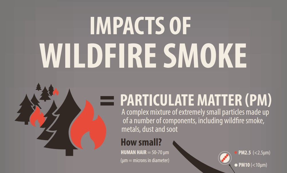 Protect Yourself From Smoke